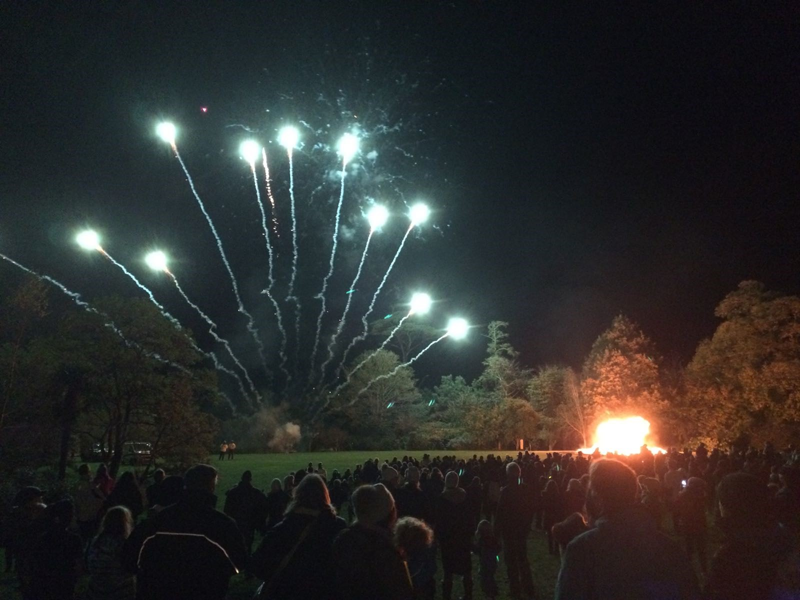 GA Bonfire Night Image