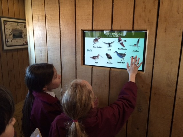 Form IV's visit the Wetland Centre Image