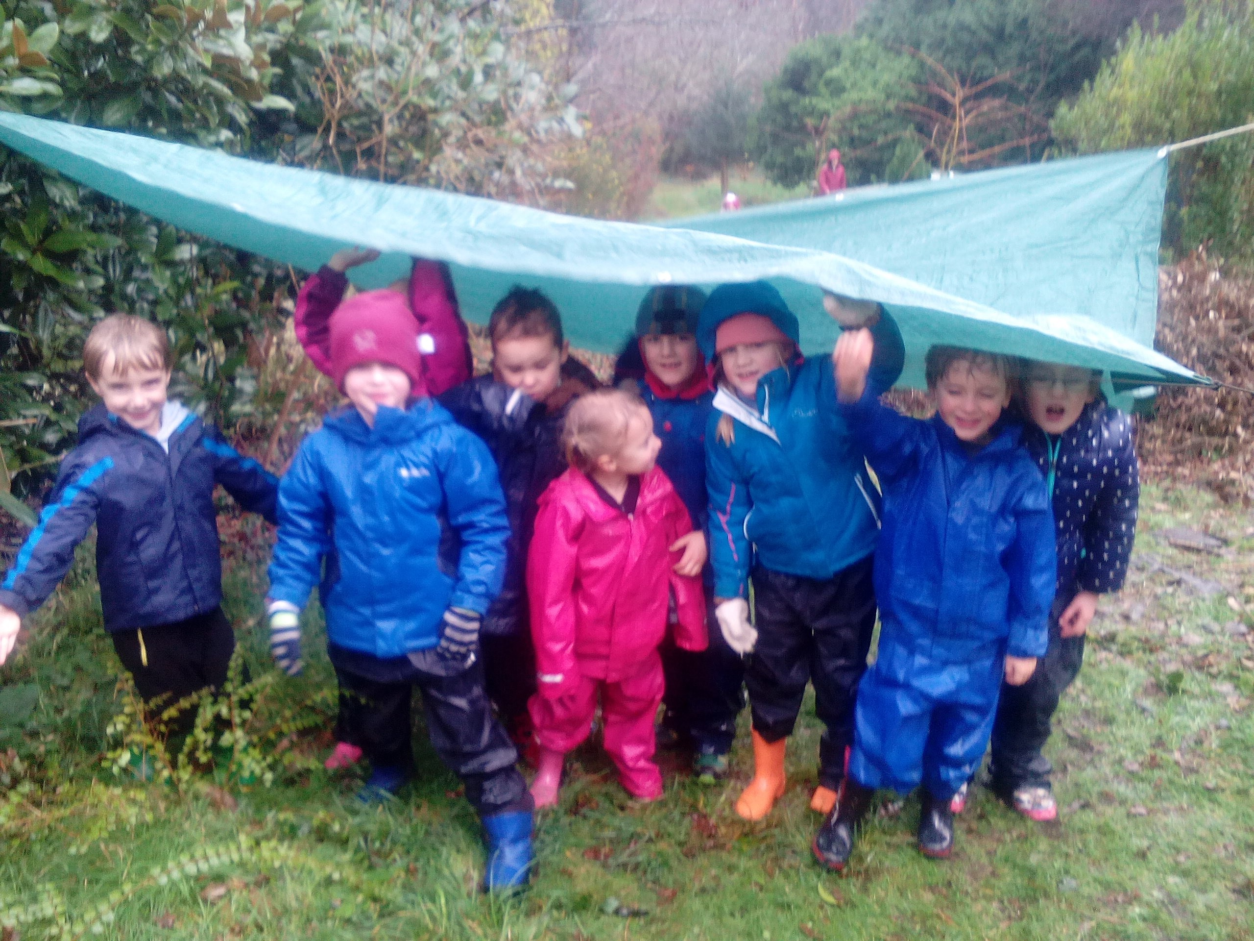 Form I Forest School Image