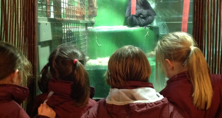 Conservation Club Trip to Jersey Zoo Image