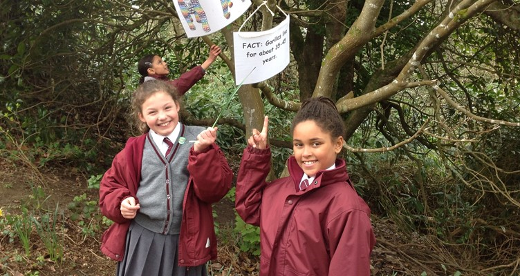 Conservation Club get involved in the 'Go Wild Gorillas' Campaign Image